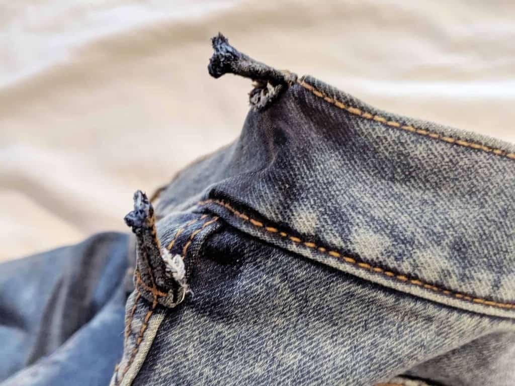 Our Shiba Inu chewed my husband's jeans